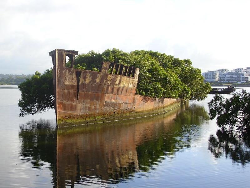 'Ayrfield' & 'Mortlake Bank' wrecks in Homebush Bay