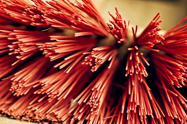 Red Bristles