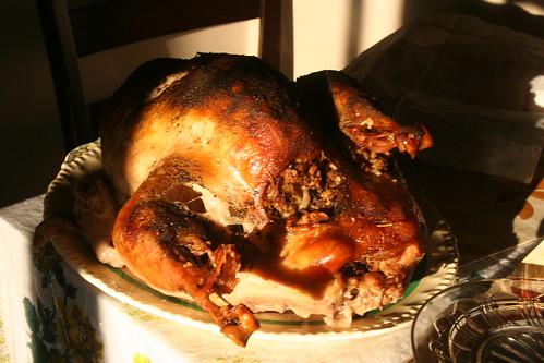 Thanksgiving, Wiarton, 2011_5647 | by Bobolink