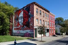 Living Walls - Albany, NY - 2011, Sep - 11.jpg by sebastien.barre