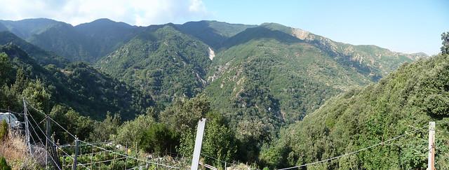 Panorama lungo il sentiero dei fuoristrada Bivongi 2011