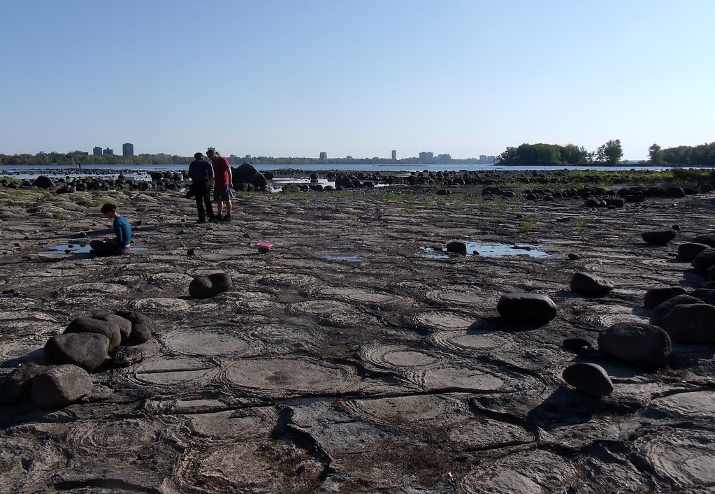 Image result for stromatolites ottawa