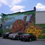 Box Turtle mural