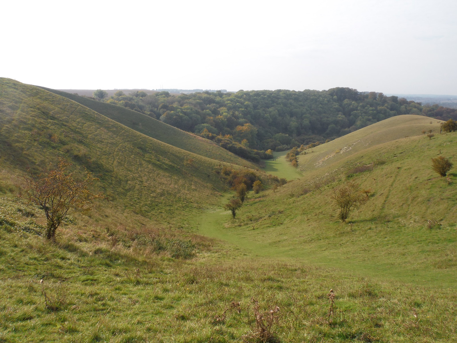 Valley in Barton Hills SWC Walk 229 Leagrave to Harlington