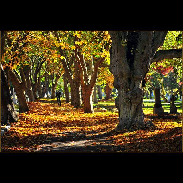 autumn ride II . . .