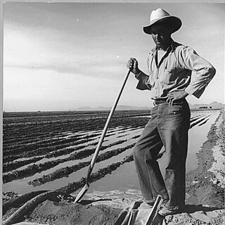 Eloy District, Pinal County, Arizona. Mexican irrigator. He came from Mexico 12 years ago...11/1940