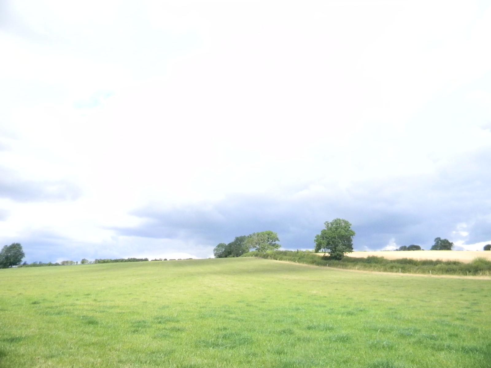 Field Moreton-in-Marsh Circular