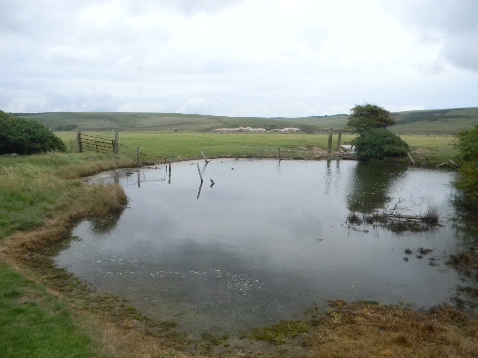 Pond Seaford to Eastbourne