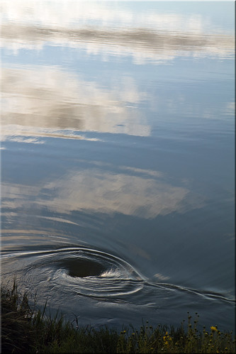 park clouds reflections bay pond san francisco drain 100views swirling bayfront 2218
