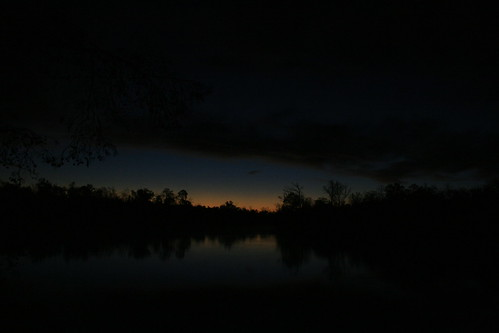 park sunrise atchafalaya swamp