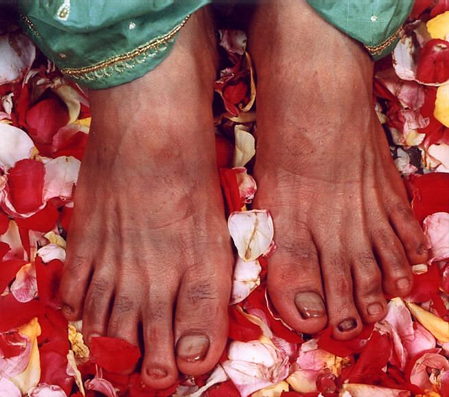 Lotus Feet of Guruji  | Malika Sharma | Flickr