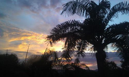 travel blue sunset orange sun clouds palms thailand photography golden warm tint s rays incredible bkk maesot htc