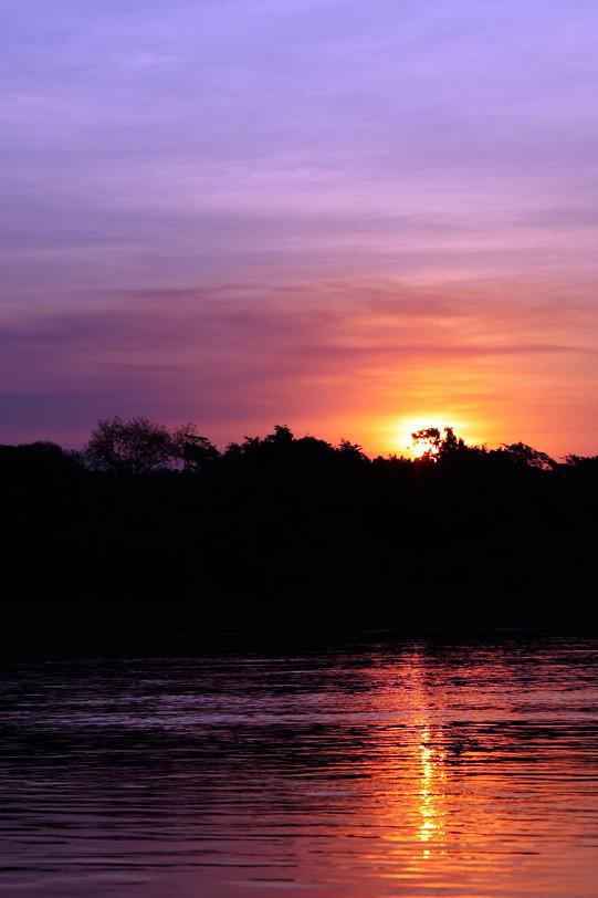 Cai o sol no Pantanal