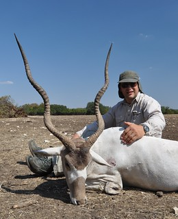2011 Addax Bull | by Hunting Texas Trophies | VBHARRE Ranch
