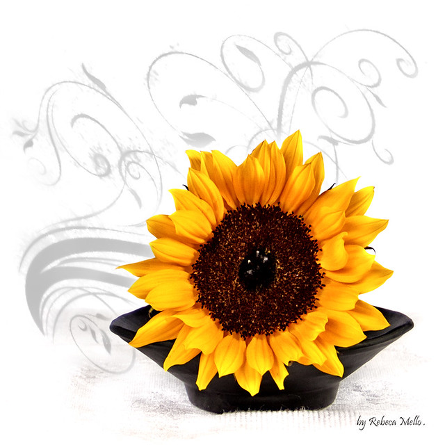 Just one  sunflower ..