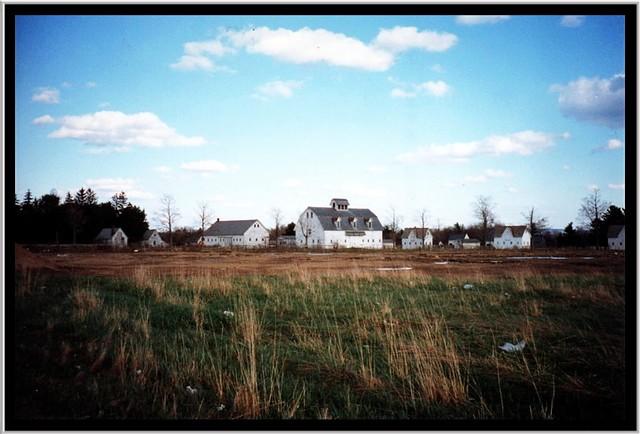 Sanford Stud Farms ~ Amsterdam NY ~ Film early 90's