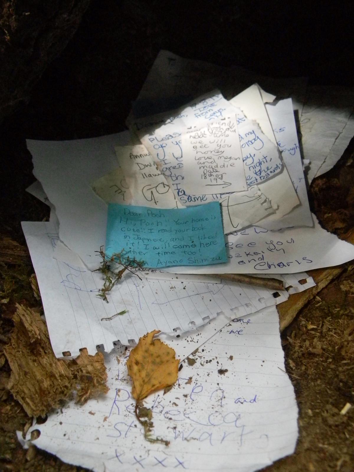 Letters to a bear Pooh bridge, Ashurst Circular