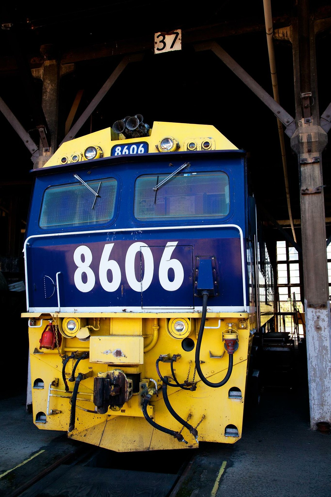 8606 at Junee by Trent