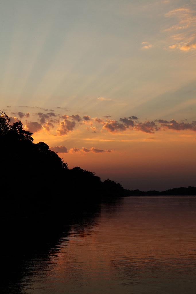Nasce o sol no Pantanal