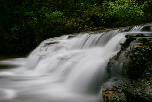 road bridge water creek waterfall stream dam alabama tuscaloosa brook spillway tuscaloosacounty deerlickcreek alalto lakenicol