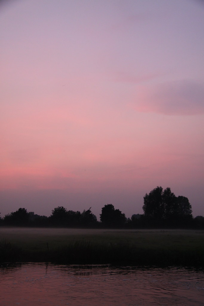 turn to pink