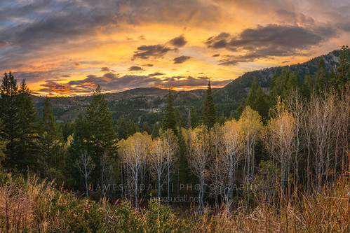 morning autumn trees sky mountains fall nature leaves clouds forest sunrise outdoors utah woods wasatch timpanogos aspen alpineloop mounttimpanogos jamesudall