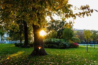 Sol de Viena | by mabej2014