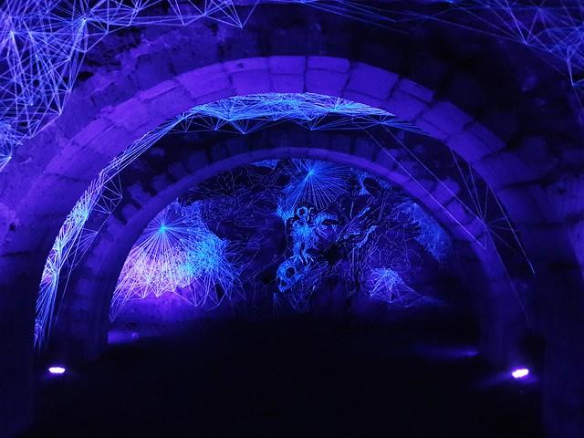 La crypte des effraies (The crypt of owls)