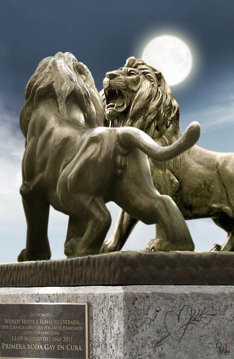 Líos de leones...