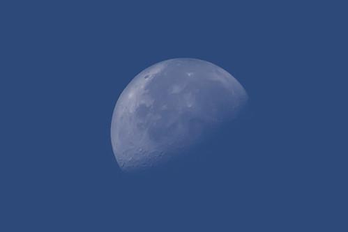 moon toronto ontario sunrise canon 7d half lakeontario lakeshoreblvd moonshot halfmoon earlymoon canon7d lakeshorevillage