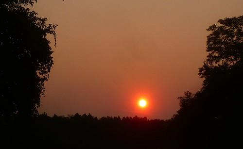 trees sky sun sunrise dawn virginia panasonic va salem greenway greenhillpark salemva greenhillparkgreenway