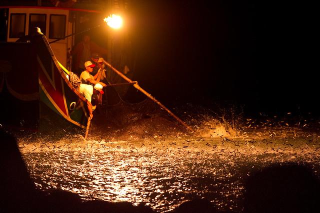 磺火捕魚-0280
