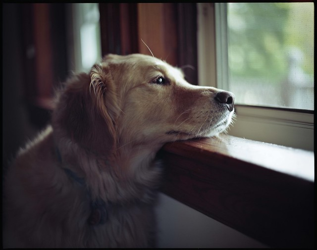 When can we go out?