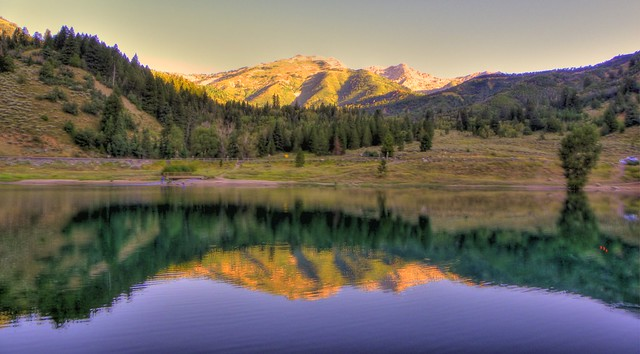 Tibble Fork in P90 and HDR