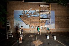 Living Walls (The Elk) - Albany, NY - 2011, Sep - 01.jpg by sebastien.barre