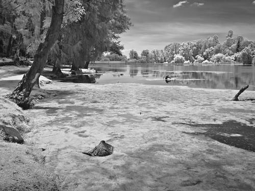 La orilla.