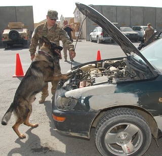 Military Working Dogs  search vehicles at 401st AFSB August 25 | by 401st_AFSB