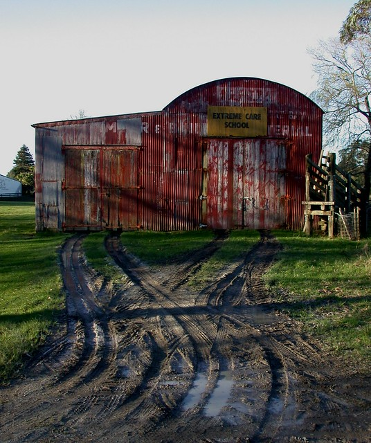Dairy Flat: barn (1)