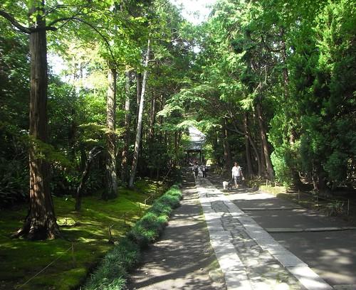 2011/09/17 (土) - 10:32 - 総門と中門を結ぶ参道