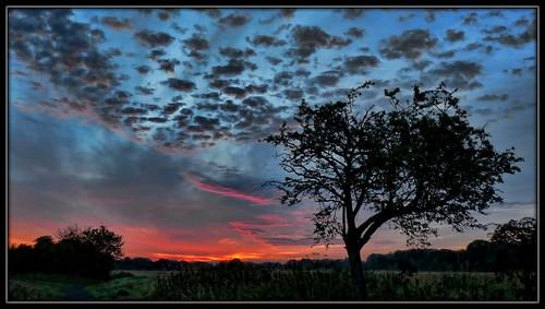 uk blue sky tree nature sunshine silhouette clouds sunrise colours ourtime digitalcameraclub pdpnw mygearandme onlythebestofnature artcityart