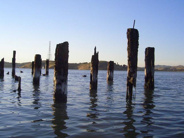 The Standing Stones of Eckley