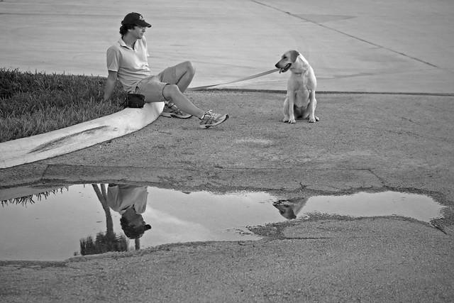 Sitting Reflecting