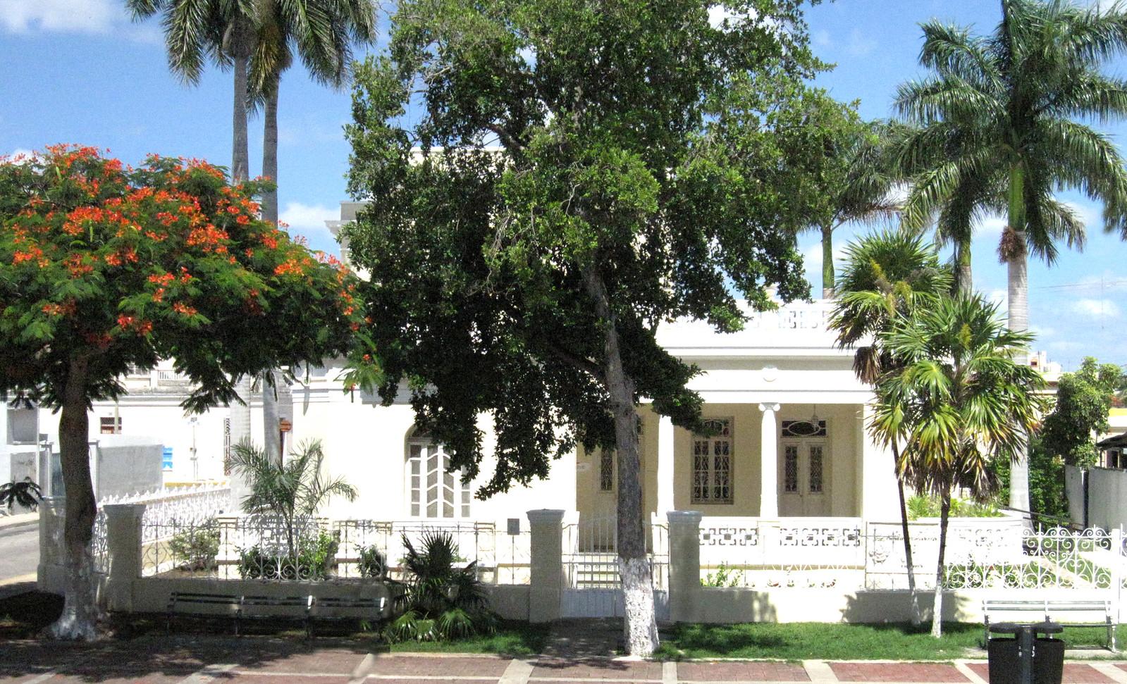 Mérida 36