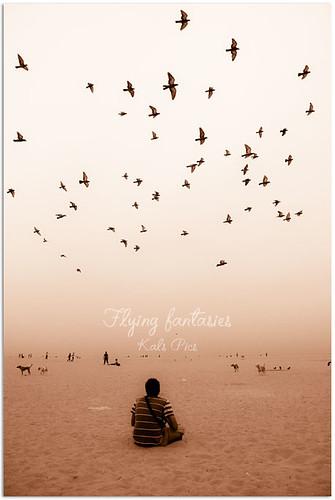india beach birds marina landscape fly nikon pigeons wideangle fantasy 1855mm chennai cwc d40 kalspics chennaiweekendclickers