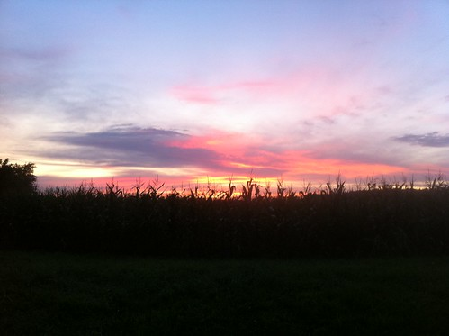 sunset corn munithmi