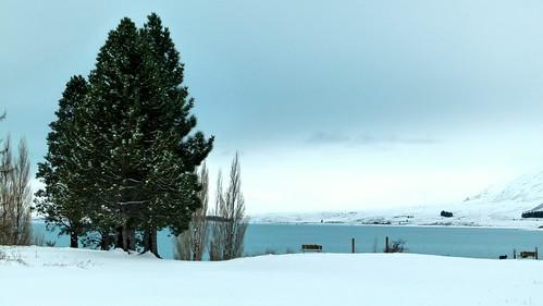 Lake Tekapo_2