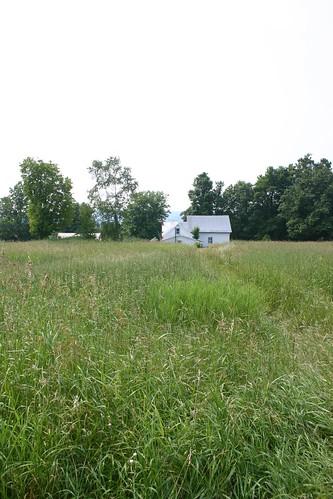 ny farm land