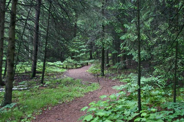Wisconsin - Ridges Sanctuary