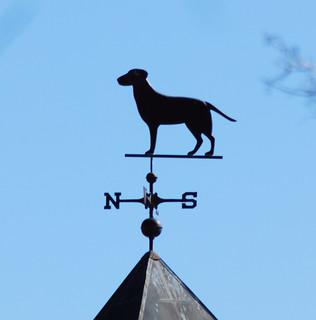 Dog weathervane   by BobMacInnes