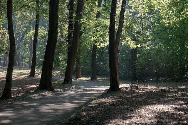 Torgau: Stadtpark Glacis